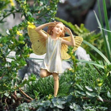 Elder Fairy