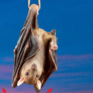 Halloween Hanging Swinging Bat with Realistic Details