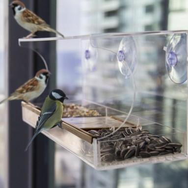 Large Window Bird Feeder
