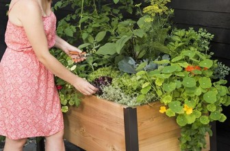 Raised Garden Bed Elevated Cedar Planter Box