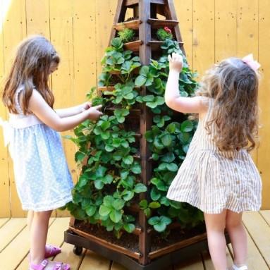 Tower Vertical Garden